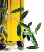 Оливковая ветвь на фоне бутылки с маслом
