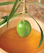 оливковая ветвь на фоне чаши с маслом